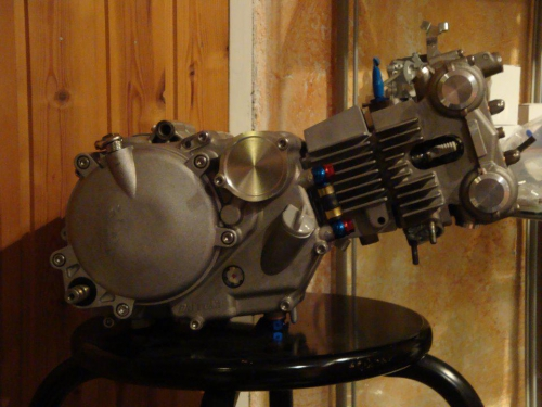 pitbike daytona engine